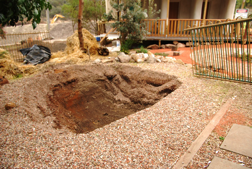 eco pond before